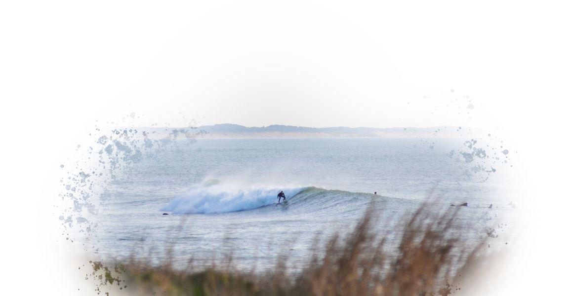Squid Surfboards vendée planche de surf sur mesure planche ecologique
